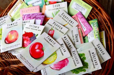 Where To Buy Organic And Non-Gmo Seeds