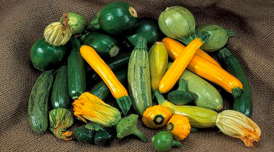 Growing Courgettes In Containers